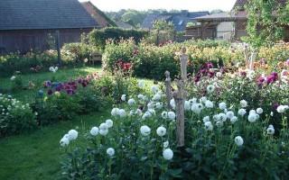 Album Offene Gärten